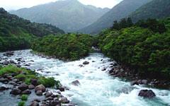 宮之浦川上流