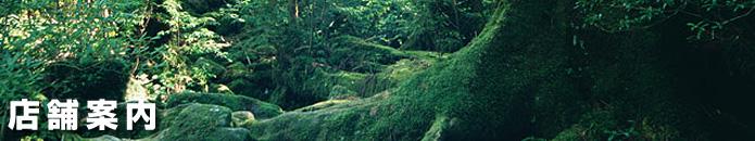 スズキレンタリース屋久島レンタカー/スズキレンタリース屋久島 店舗案内・地図